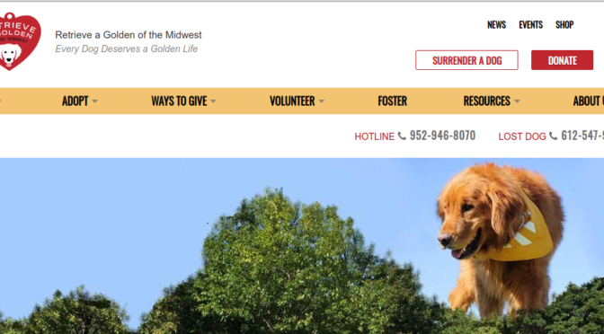 Retrieve a Golden of the Midwest (RAGOM)